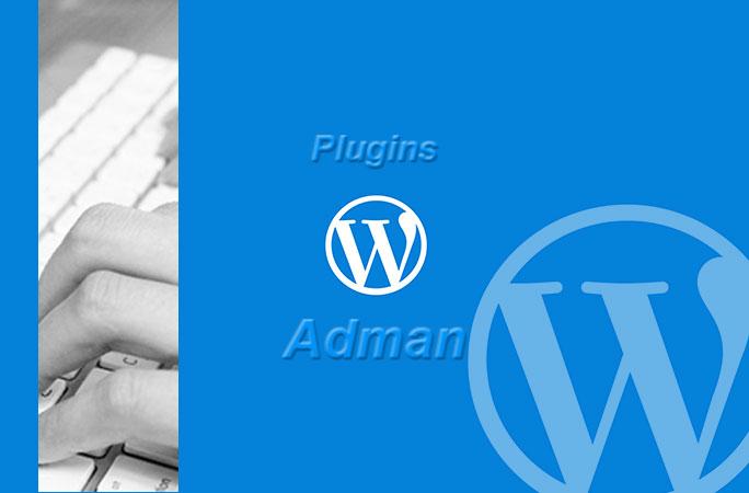 【WordPress】記事下の広告挿入に使えるプラグインAdmanの使用方法