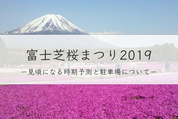 富士芝桜まつり2019の開花情報や駐車場は?見頃を過去データから予測